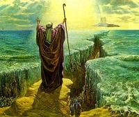 حضرت موسی(ع) کا نام کس نے منتخب کیا ہے؟