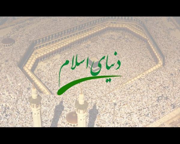 عالم اسلام میں دشمن سازشیں اور دہشت گردی